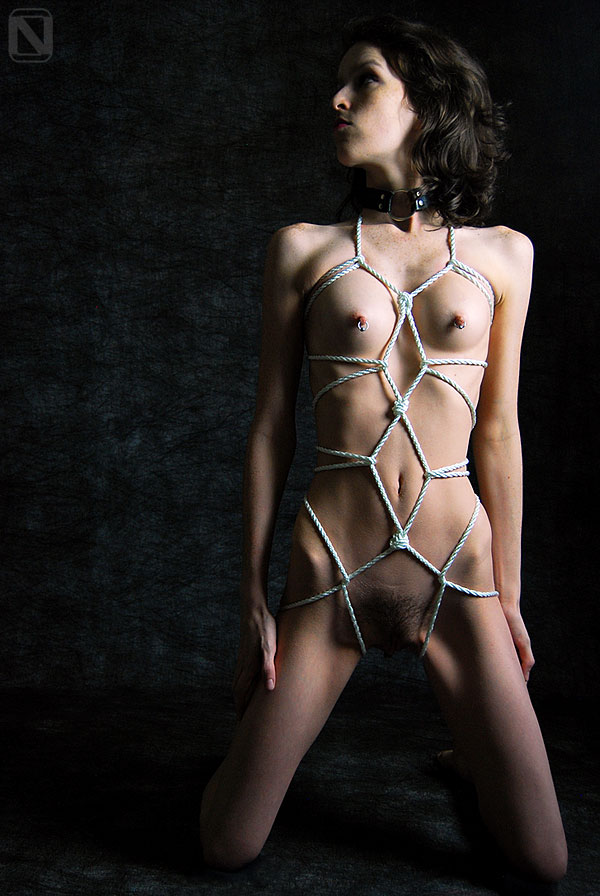 Pity, that bondage rope body harness opinion you